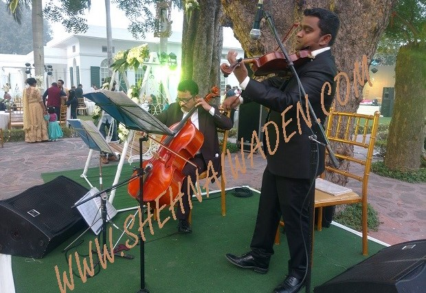Instrumental Band For Wedding